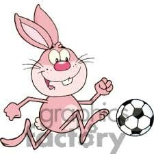 Pink Bunny with ball